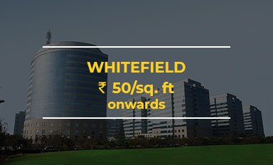 Whitefield-Office-Space